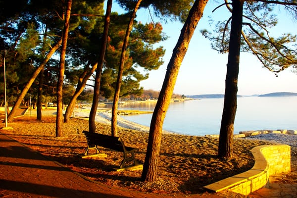Porec Beaches | Porec Beach near Hotel Delfin