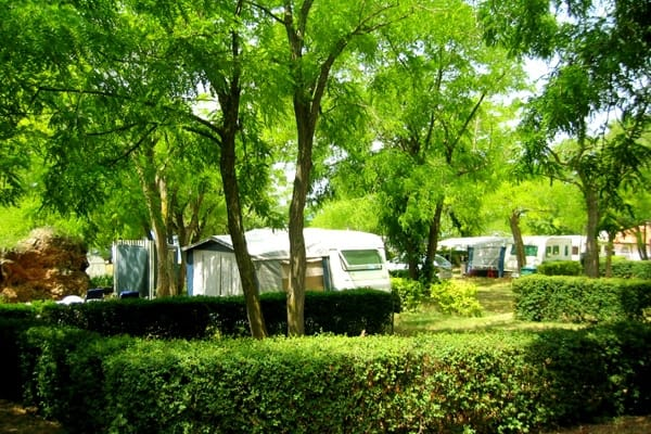 Comfort Pitches in Camping Lanterna