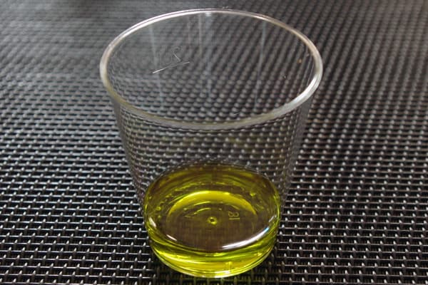 Istria Off The Beaten Track: Olive Oil Tasting