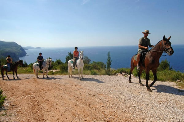 Konavle Region: Horse-back riding