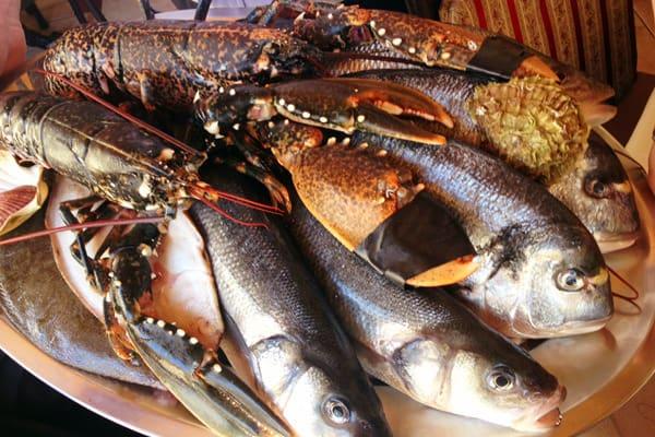 Tavern Cok Novigrad - Fresh fish