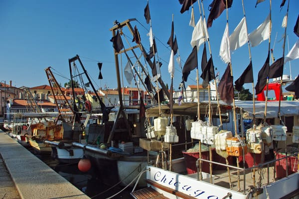 Novigrad Photos: Fishing boats