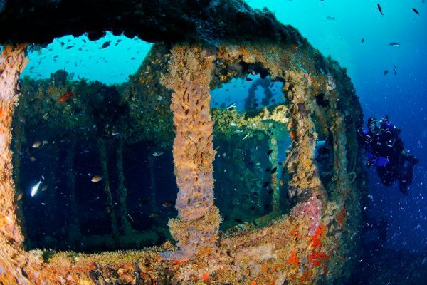 Things To Do In Rovinj Croatia | Scuba Diving