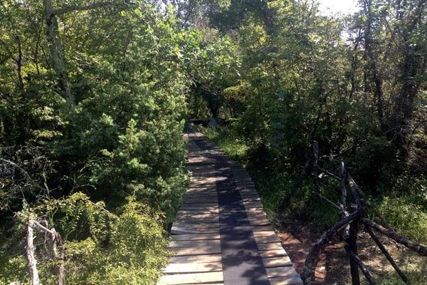 Dinosaur Park Funtana: Walkways