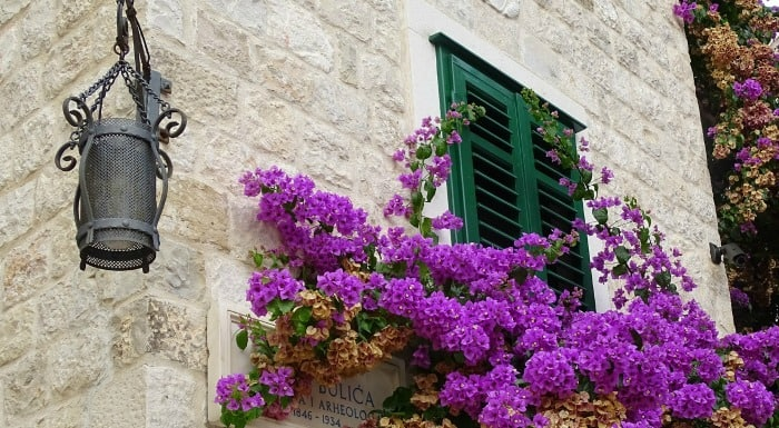 Things To Do In Split Croatia | Discover Split's Neighbourghood
