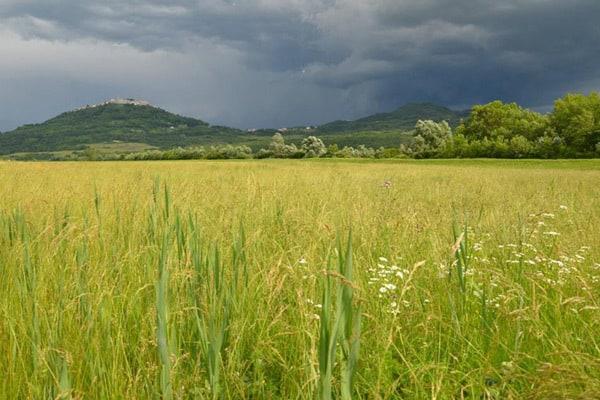 Istrian Hilltop Towns: Green Istria