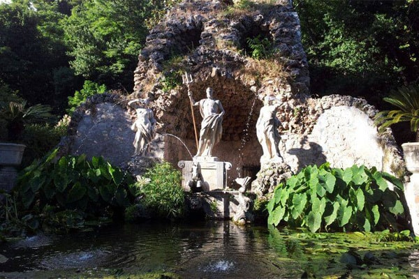 Things to do in Dubrovnik: Arboretum Trsteno