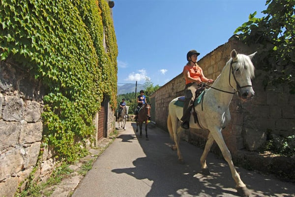 Things to do in Dubrovnik: Horse-back riding
