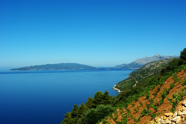 Hiking Dalmatia: Dingac
