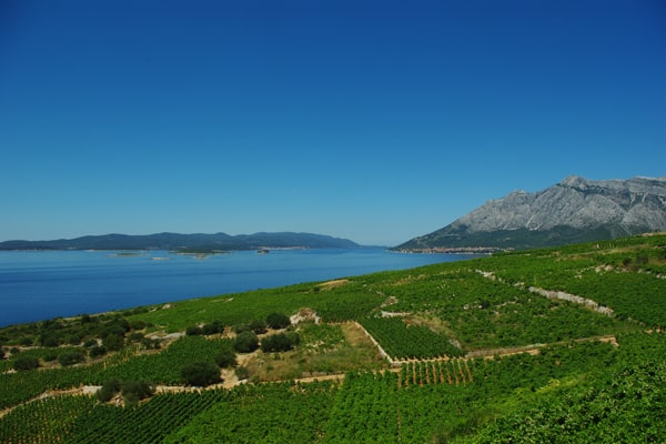 Hiking Dalmatia: Potomje