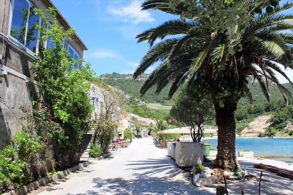 Trstenik Peljesac: seafront promenade dotted with palm trees, houses, and seafront bars' terraces in Trstenik Peljesac