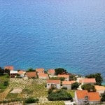 Slow Roads Croatia: Borak Peljesac