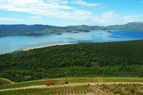 Komarna: Croatian wine region with the view