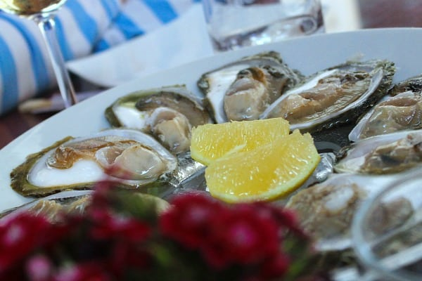 Peljesac Peninsula Travel Guide | Oysters from Ston
