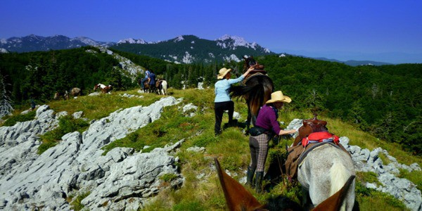 Horseback riding on the Velebit mountain