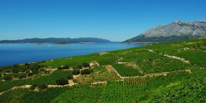 Where To Go In Croatia | Peljesac Peninsula
