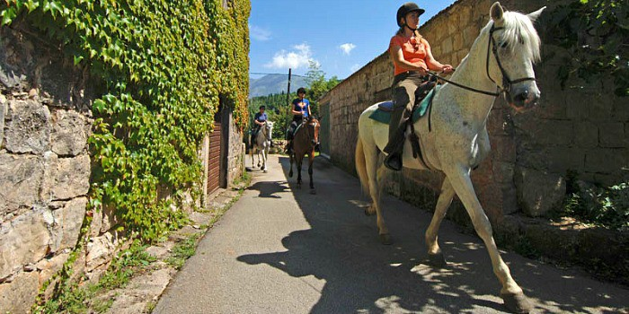 People riding horses through Konavle