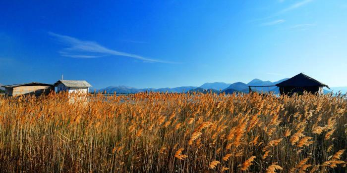 Panasonic Lumix GF7 Review |An estuary of the Neretva River, Croatia