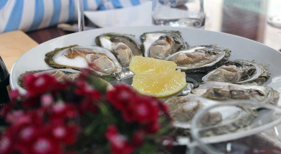 Ston oysters, Bota Oyster Bar in Dubrovnik